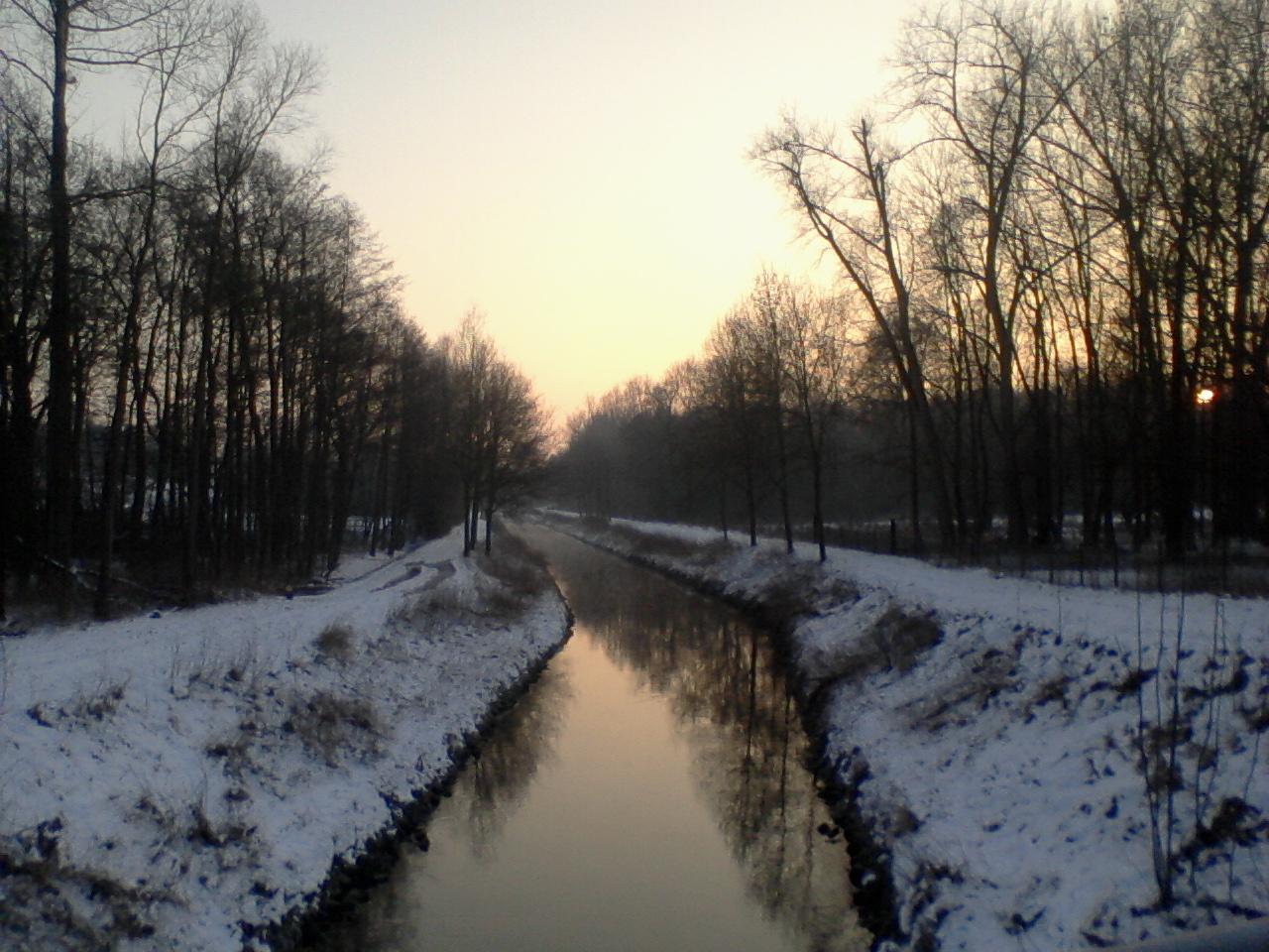 6 feb 2012-0008.jpg