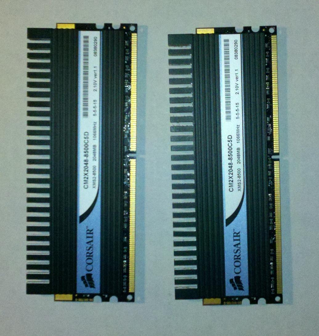 CA Ram 2.jpg