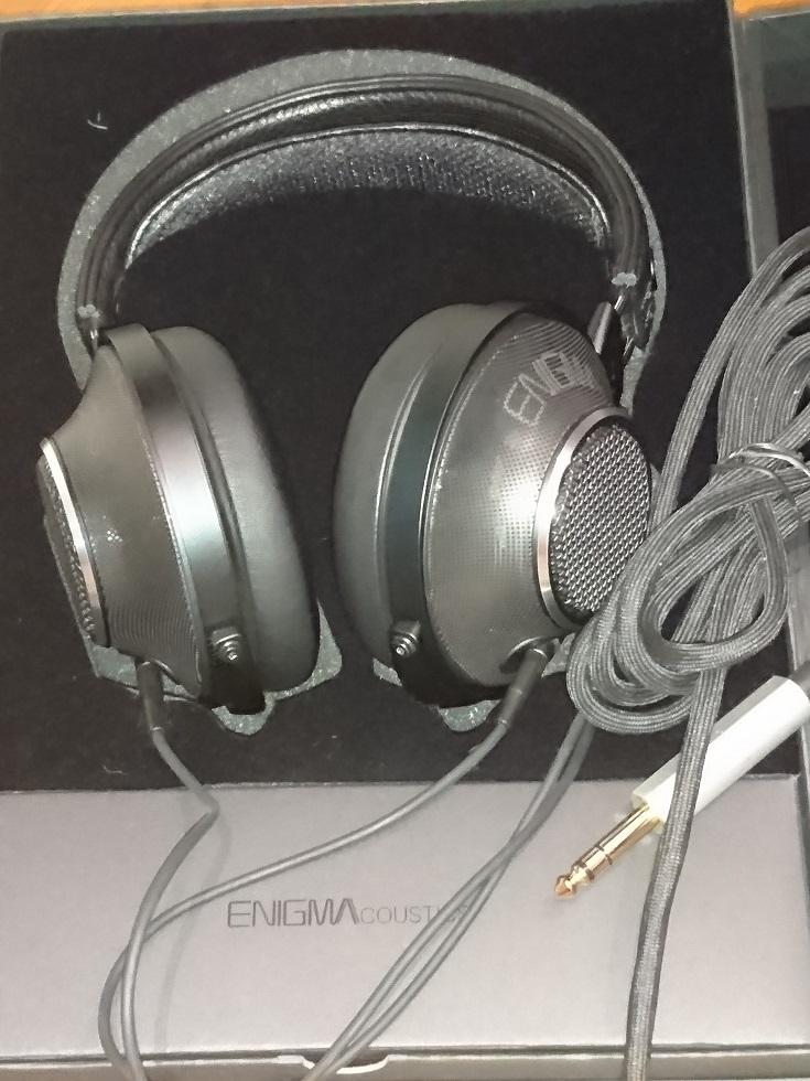 Enigma Acoustics D1000.jpg