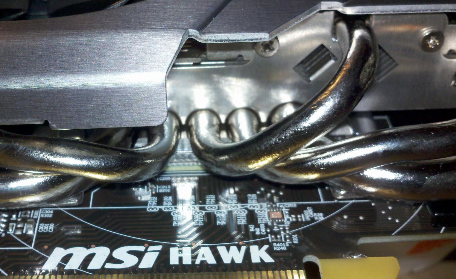 hawk 4.jpg