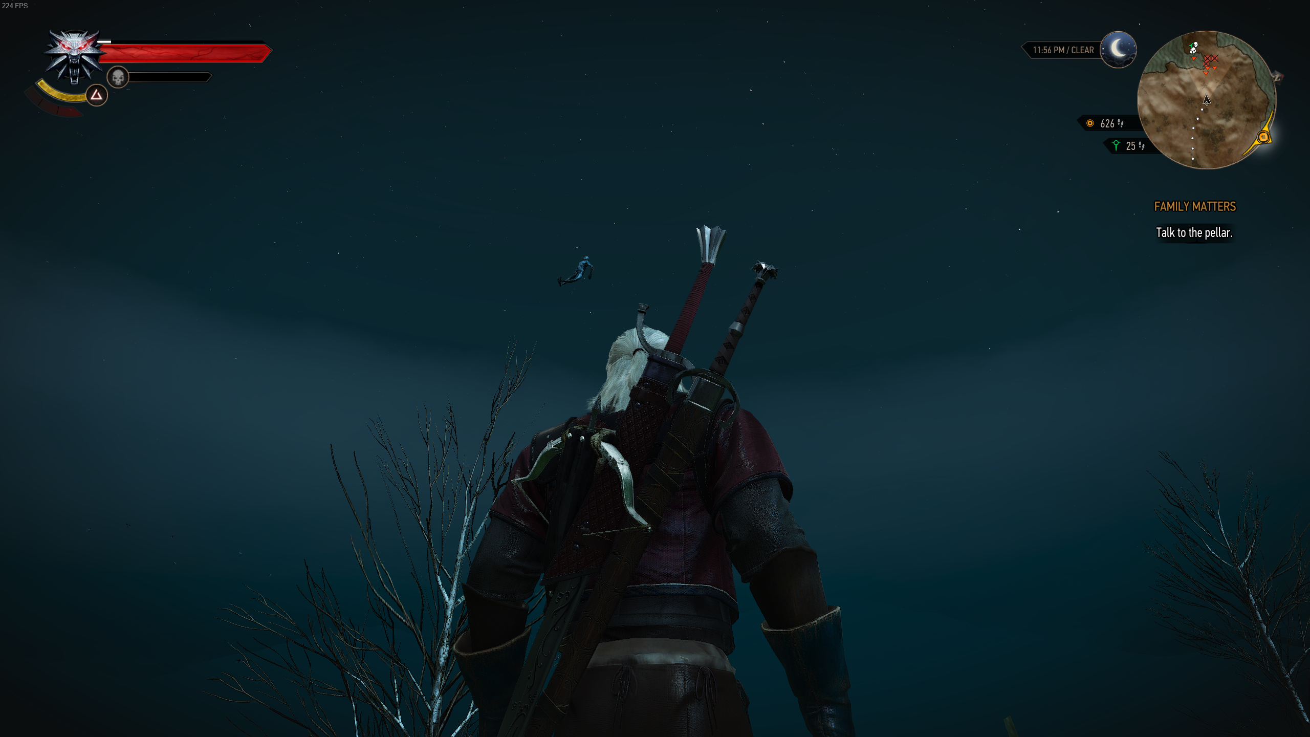 The Witcher 3 Screenshot 2019.12.03 - 22.20.26.59.png