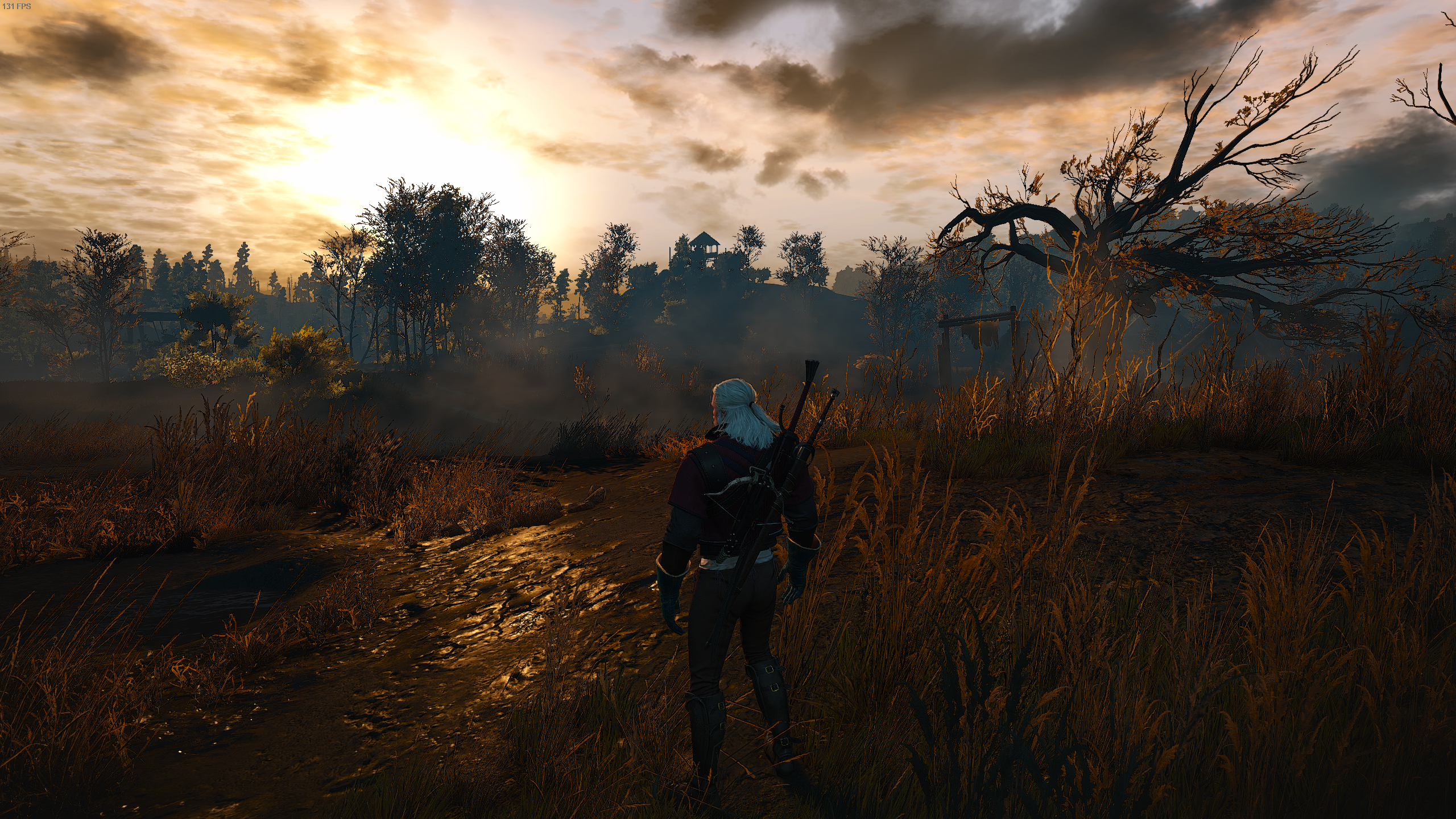 The Witcher 3 Screenshot 2019.12.03 - 23.00.08.58.png